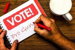 Vote For Me, I Own A Gun!
