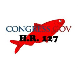 HR 127, Real or Red Herring?