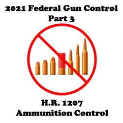 2021 Federal Gun Control Part 3: H.R. 1207 (Stop Online Ammunition Sales Act of 2021)