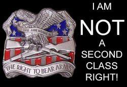 The Second Amendment – A Second Class Right
