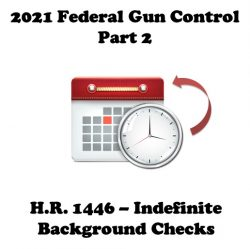 2021 Federal Gun Control Part 2: H.R. 1446 (Enhanced Background Check Act of 2021)