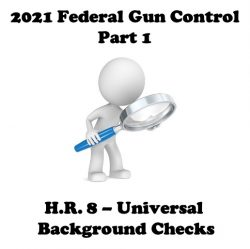 2021 Federal Gun Control Part 1: H.R. 8 (Bipartisan Background Checks Act of 2021)